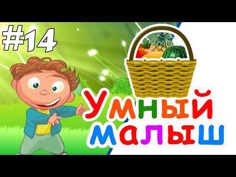 Развивающий мультфильм умный ребенок