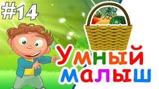 Умный малыш #14. Развивающий мультфильм для малышей / Smart baby #14. Наше_всё!