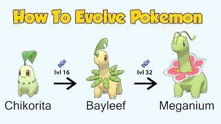 How To Evolve Pokémon - Geneŗation 2 Johto (Animated Sprites)