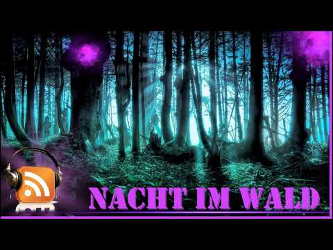 😈 Neues Horror Hörspiel 😈  Nacht Im Wald, Horror Grusel Hörspiel, Komplet Auf Deutsch. NEU !