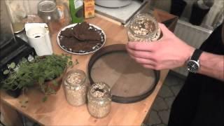 Selbstgemachtes Mehl für Rohkost Plätzchen (glutenfrei und gesund)