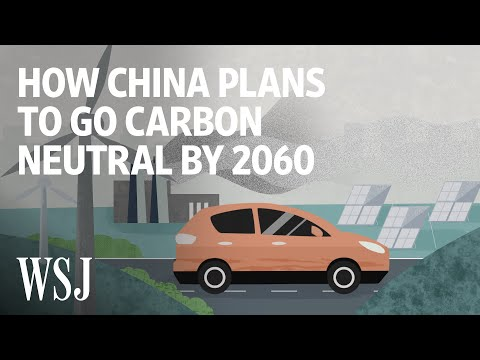 China's Next Economic Transformation: Going Carbon Neutral by 2060 | WSJ