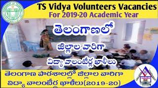 TS Vidya Volunteers District Wise Vacancies for 2019-20 Academic Year
