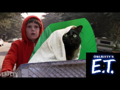 E.T. + My cat OwlKItty (Behind the Scenes)