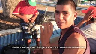 Más de 100 trochas y un futuro incierto, el drama venezolano en La Guajira