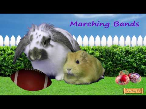 Be in the 58th Easter Parade