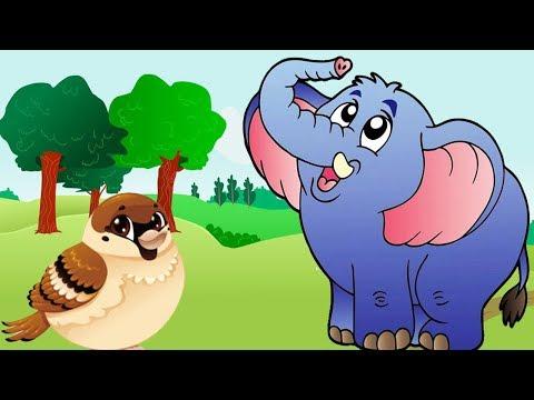 The Royal Elephant | Sparrow & The Elephant – Fairy Tales