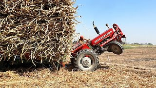 Mf 260 turbo pulling a very heavy loaded trolley with stunts | Power of Mf 260 | Tractor dance