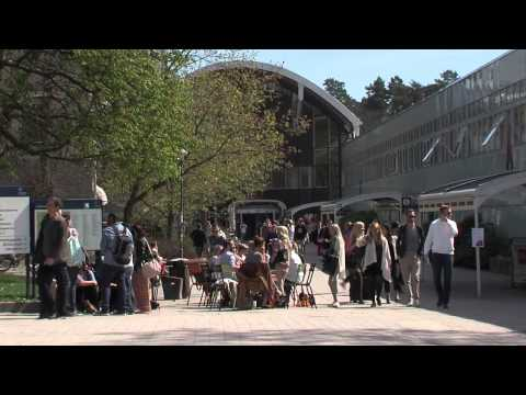 Voices of Stockholm University students