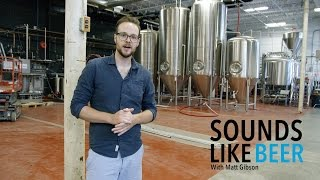 Sounds Like Beer Ep. #4 Henderson