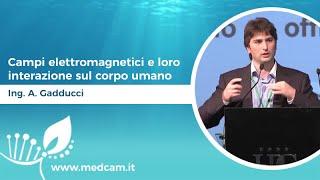 Campi elettromagnetici e loro interazione sul corpo umano - Ing. Andrea Gadducci
