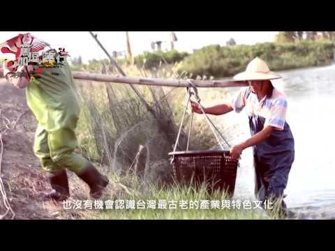 篤加逗陣行第九集:獨家回顧,篤加生態景點 - YouTube