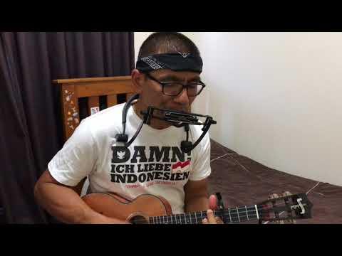 Sayang kane | Ukulele & harmonca cover