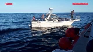 Сотрудники МЧС спасли людей, дрейфовавших в Авачинском заливе