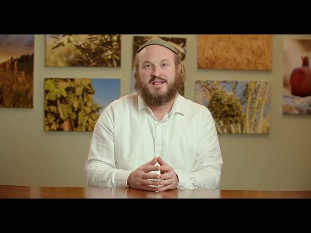 Yitro – Being Touched By What You Hear – Rabbi Shlomo Katz