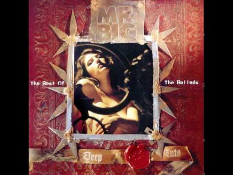 Mr. Big - Anything For You