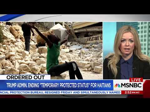 Download Youtube: Fiona McEntee   MSNBC TV News 11 25 2017 MSNBC Live