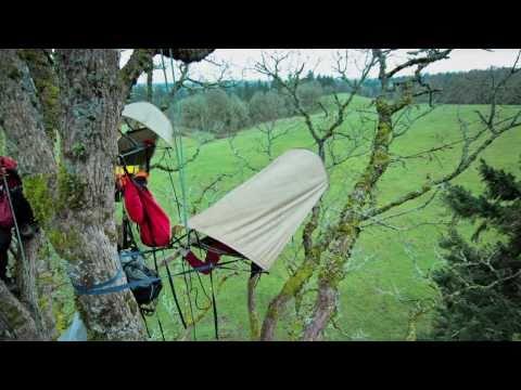 Treeverse Trailer