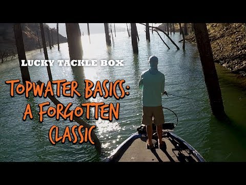 How To Catch Bass With A Topwater Prop