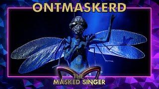 ONTMASKERD: Wie is Libelle echt?   The Masked Singer   VTM