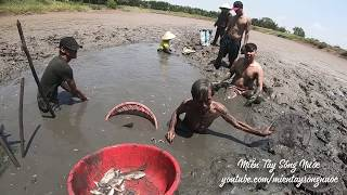 Cả Xóm Đổ Xô Bắt Hàng Trăm Kí Cá , Tôm Trong Cái Đầm Bỏ Hoang