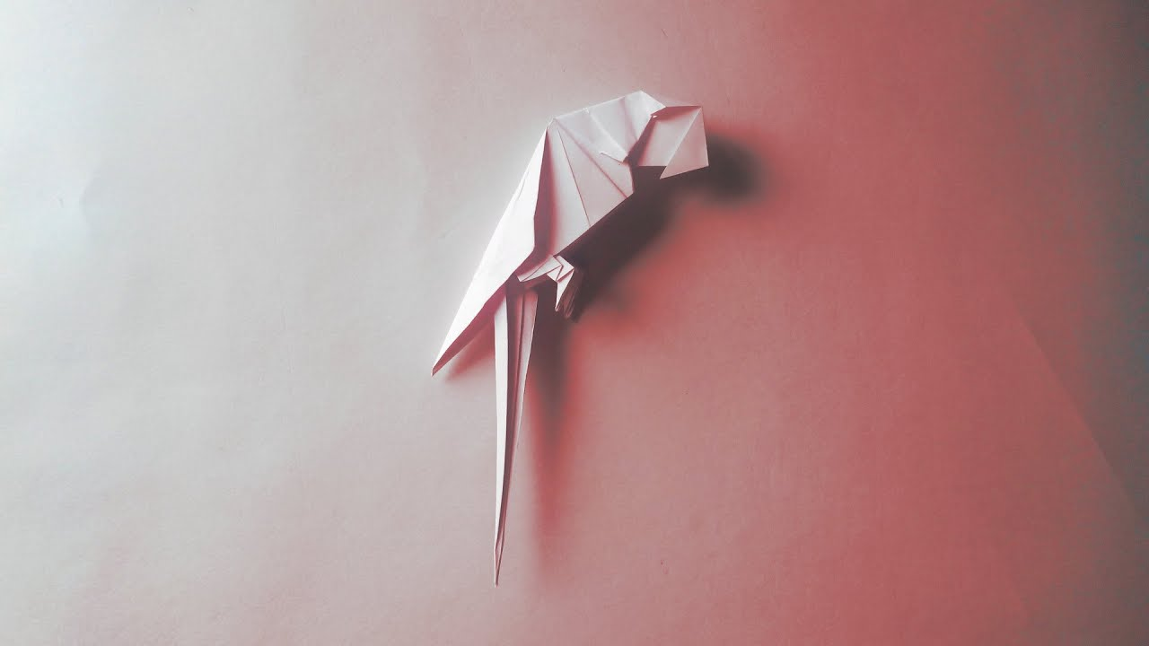how to make a origami macaw parrot easy