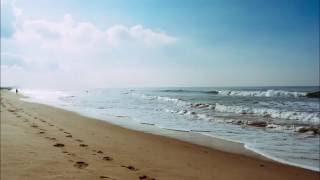 Звуки природы для сна Шум моря и чаек