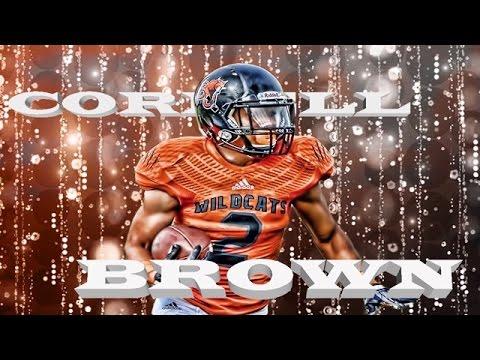 Baker University Junior RB Cornell Brown 2016 season highlight REMIX