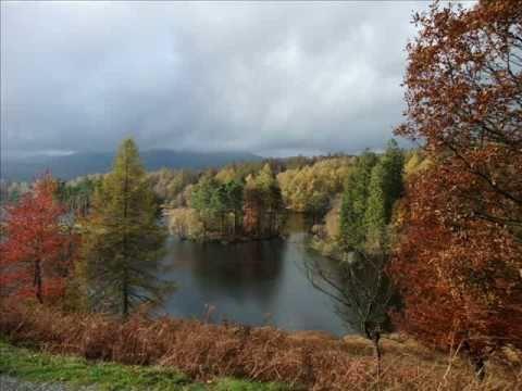 Tarn Hows Summer Autumn