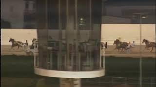 Vidéo de la course PMU PREMI CAVAILLON