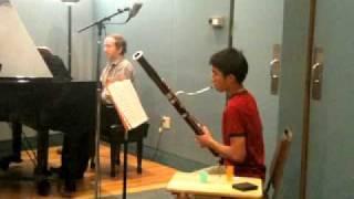 Bassoon Concerto In B Flat, K 191: III. Rondo, Tempo Di Menuetto - Mozart