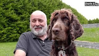 Charlie & Me visit Cong Caravan & Glamping Park Co Mayo on holidays