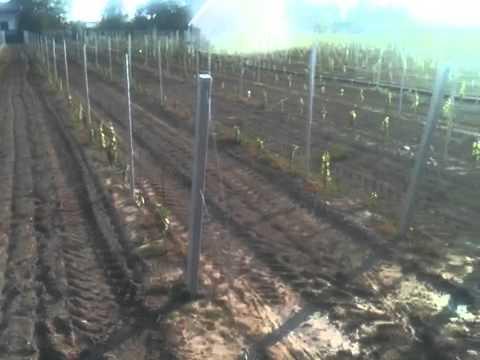 irrigazione vigneto youtube