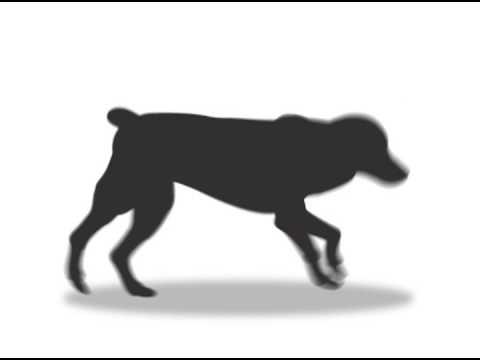 running dog animation youtube