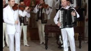 muzica populara - Hora Moldoveneasca (Fratii Advahov)