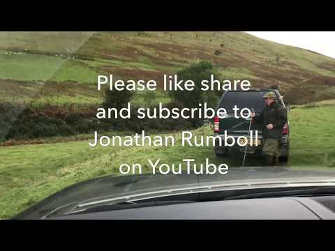 Extreme Partridge Shooting at Langholm 2nd October 2017