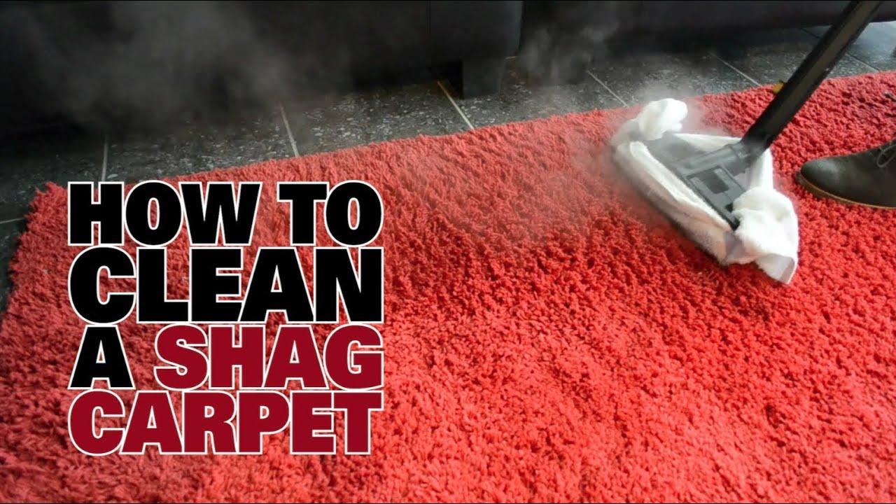 How to Steam Clean a Shag Carpet - Dupray - YouTube