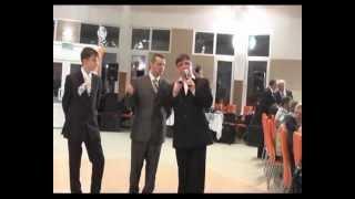 свадебный ведущий минск gulianka-promo