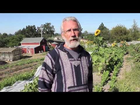 Cultivating Impact Farms | Sonoma County