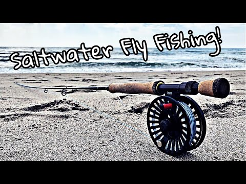 First Time Fly Fishing At The Beach | Non-Stop Action!