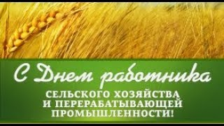 """Чернушка """"День работника сельского хозяйства"""" 19 октября 2018 год."""
