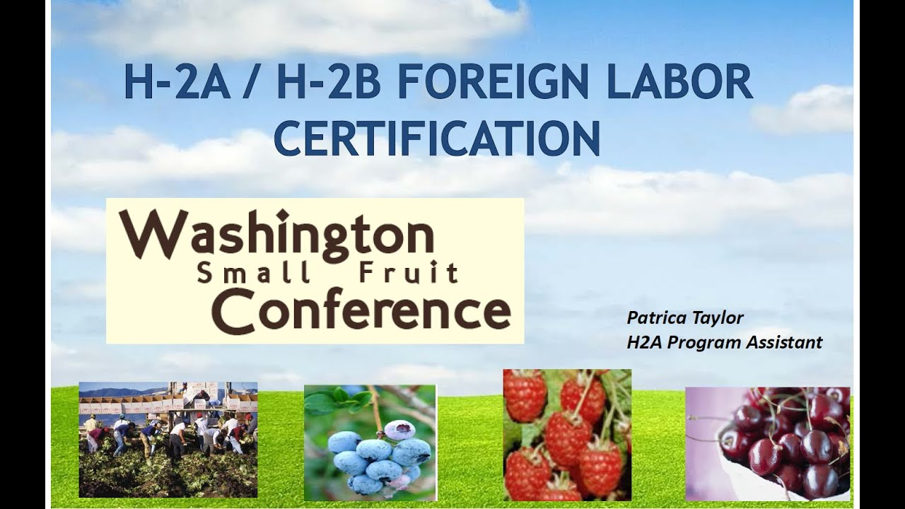 H 2ah 2b Foreign Labor Certification Patricia Taylor Wafla Youtube