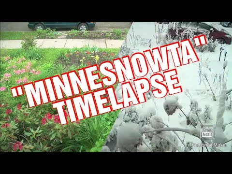 2 year MN yard timelapse    Snow in May?!
