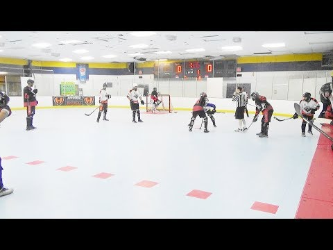 GT Tigers vs. Reapers (11/25/17) Ball Hockey
