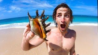 这个巨大贝壳真的会比龙虾好吃吗? 网红挑战荒岛求生【第五集】