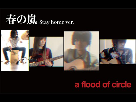 【Music Video】春の嵐 - a flood of circle [Stay home ver.]