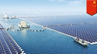 China solar panels: PRC is now home to the world's largest floating solar farm