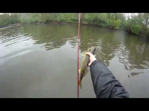 Raritan river 5 2 12 youtube for Raritan river fishing