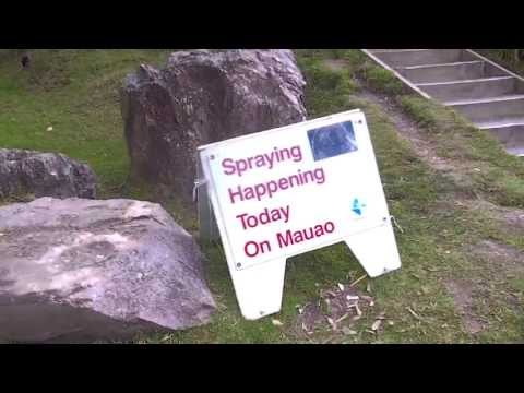 AGRICHEMICAL POISON ROUNDUP WEED AND DNA KILLER MAUAO MOUNTAIN TAURANGA NEWZEALAND