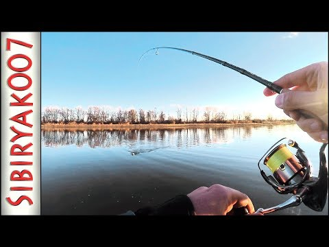 Спиннинг! Рыбалка с берега. Судак. Окунь. Щука. Как я закрыл сезон 2018